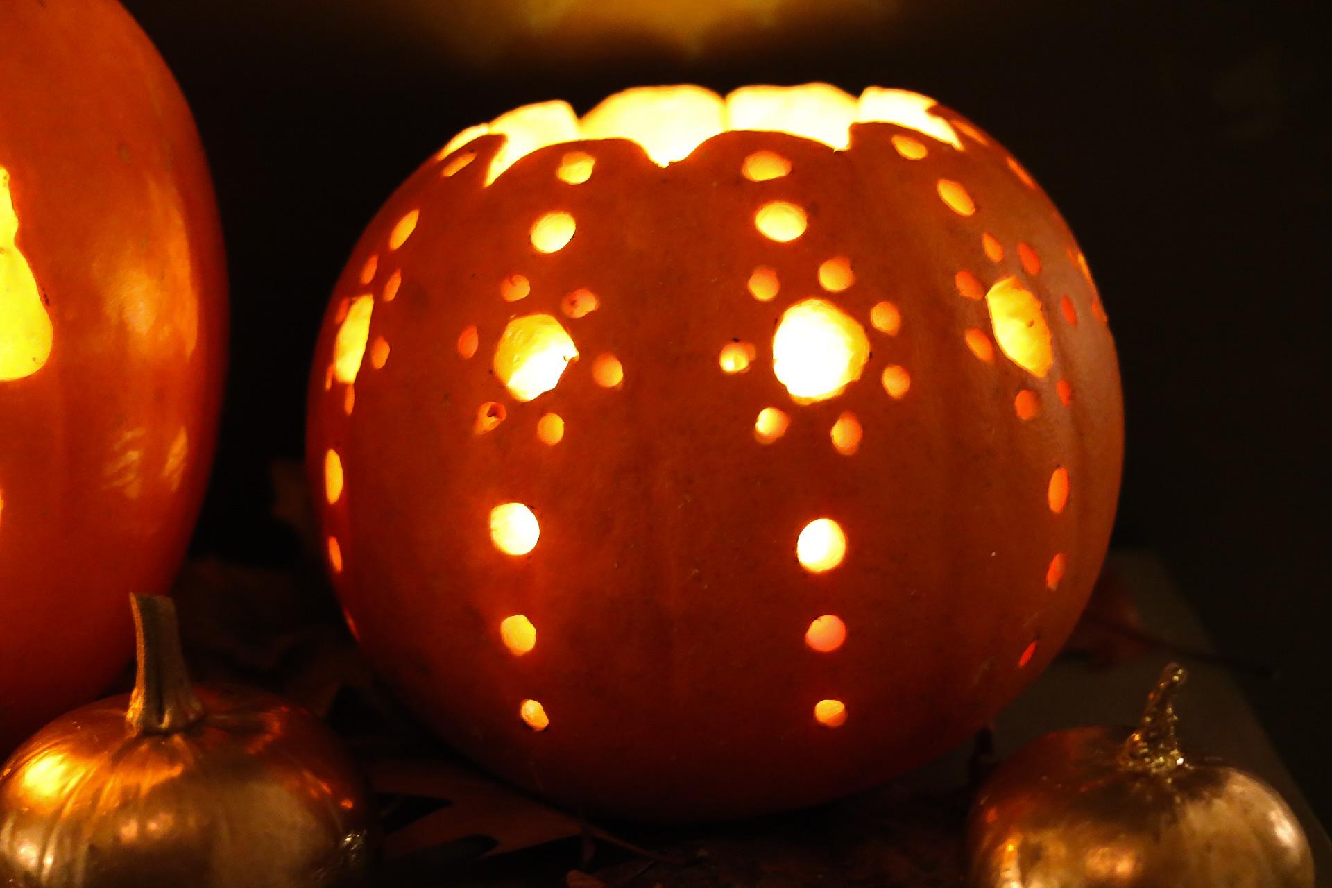 Roybo Pumpkin challenge
