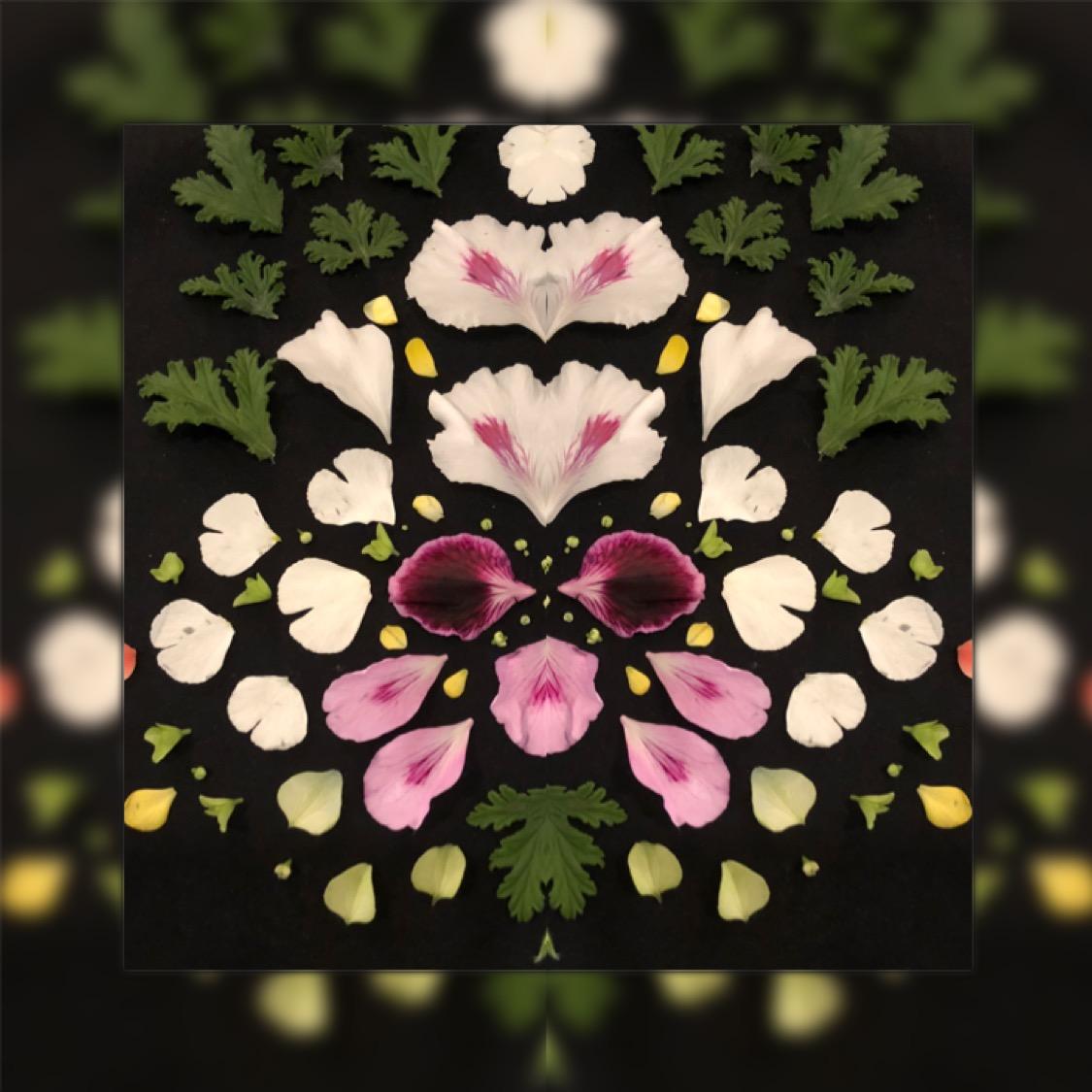 Blomstermandalas