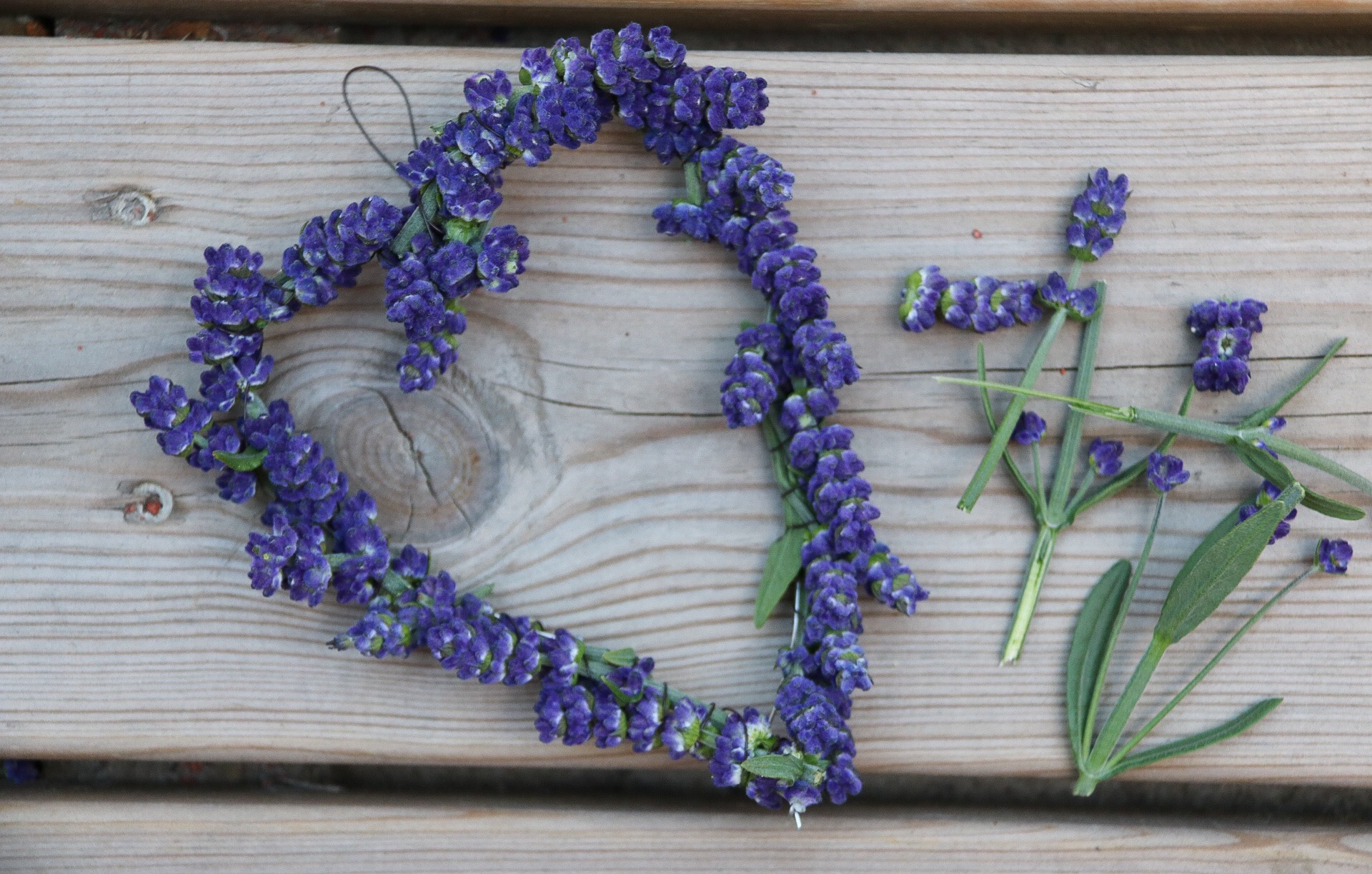 Lavendelhjärta