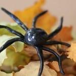 spindlar av trolldeg