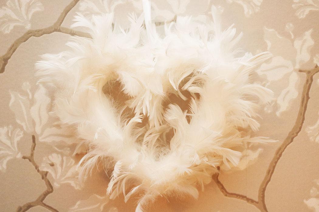 fjäderhjärta