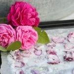 Kanderade rosor
