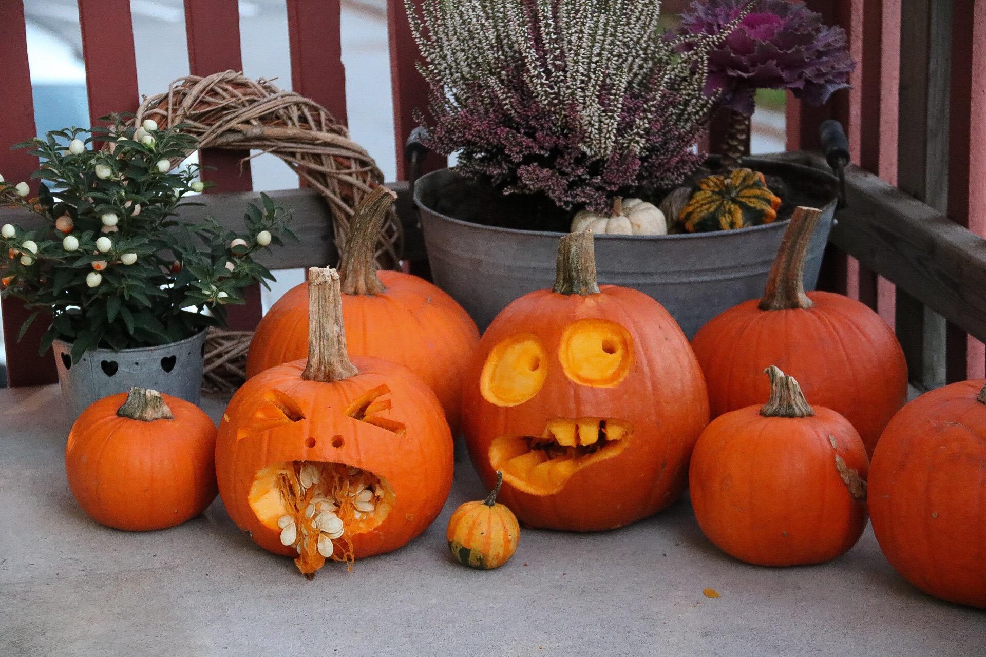Halloweenpumpor